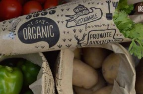 organic-main
