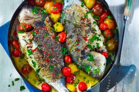 fish-best-sources-of-protein