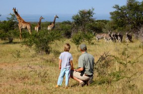 africa_south_africa_treasures_limpopo_credit_ants_hill_lodge_gallery2